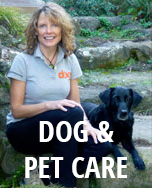 Dog_Pet Care web