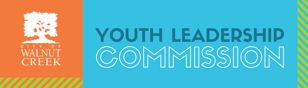 Youth Leadership Commission banner
